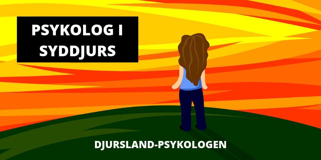 Venlig psykolog i Syddjurs - uden ventetid. Stress, kriser og depression.