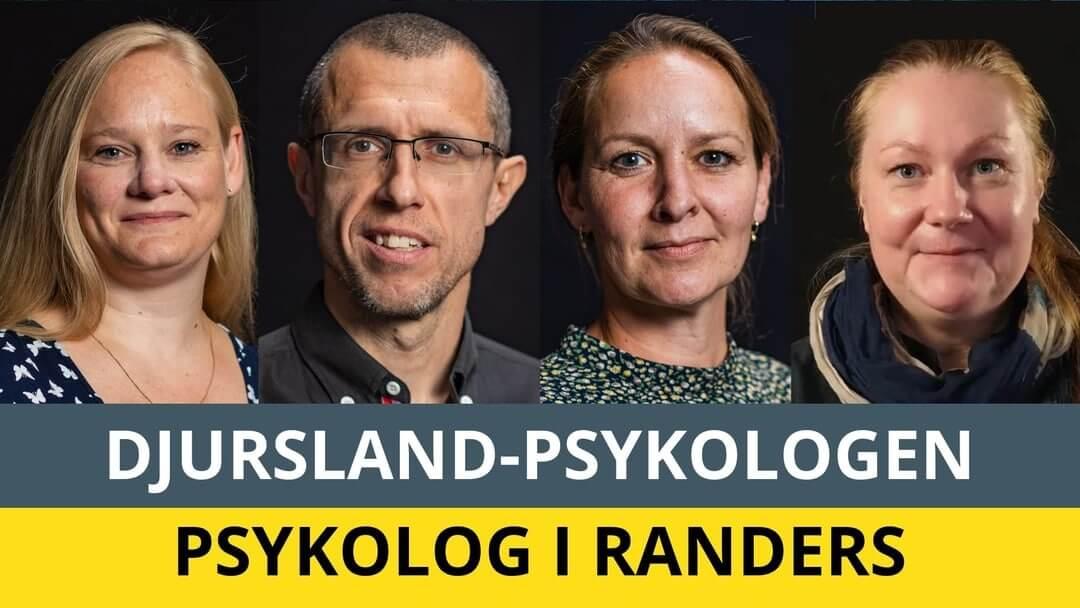 Psykolog Randers - 4 psykologer med tid til dig